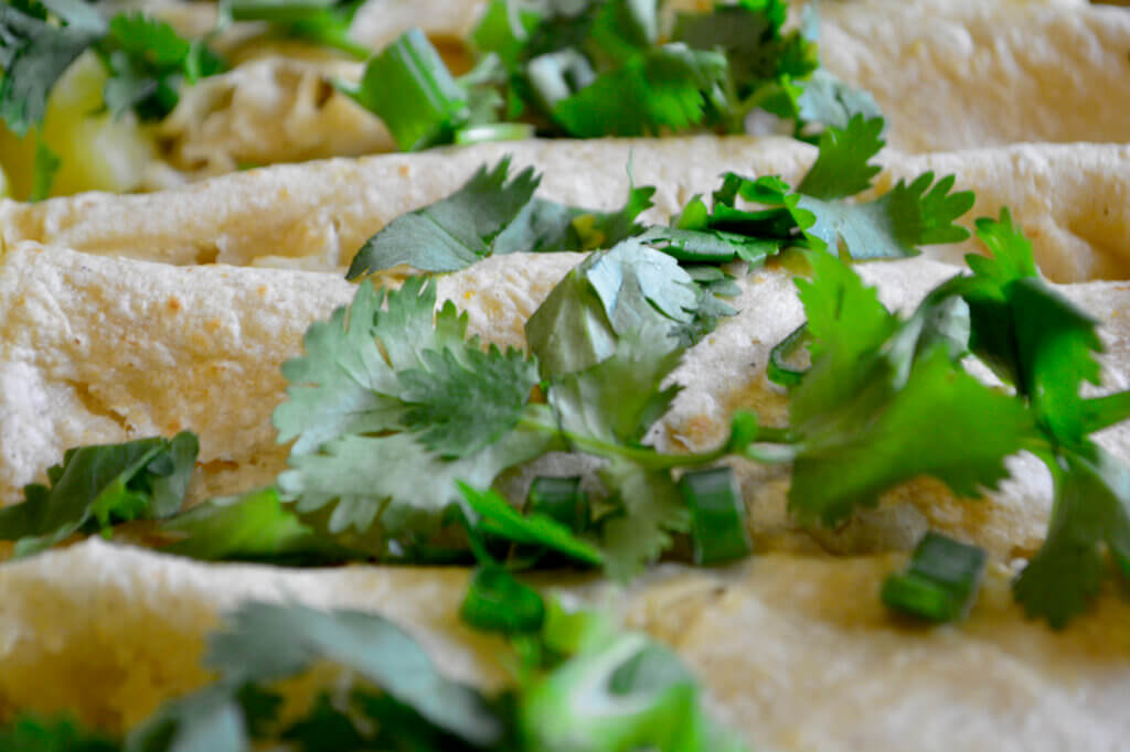 low potassium enchilada for renal diet